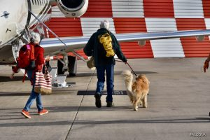 passengers boarding private jet to the USA with pet dog